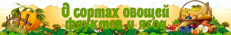 Логотип сайта Сорта овощей, фруктов, цветов
