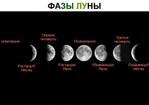 в какой фазе находиться луна сегодня попки заполненные