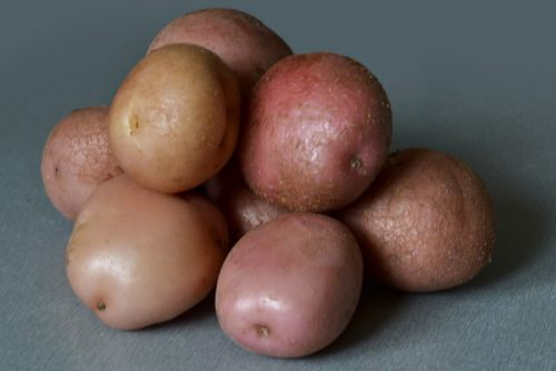 Описание картофеля цветов фото