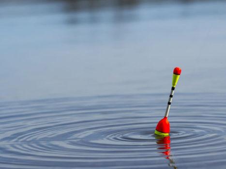 выбор поплавка для рыбалки