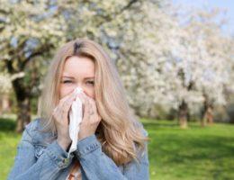 Календарь цветения для аллергиков в Москве